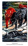 Книга Эрин Хантер: Коты-Воители Длинные тени. Восход солнца, фото 3