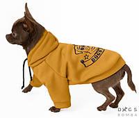 Толстовка Француз 40 см (об'єм до 66см) жовтий розм 7 для собак