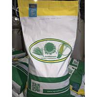 Семена кукурузы Оржица 237 МВ (ФАО 230), среднеранний гибрид кукурузы «Югагросервис»