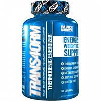 Жиросжигатель Evlution Nutrition TRANS4ORM 60caps
