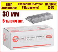 Гвозди для пневматического степлера длина 30 мм  ширина 1,25 мм  толщина 1 мм  5000 шт Intertool PT-8630, фото 1