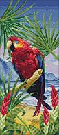 Набор для вышивания крестом 19х41 Попугай Joy Sunday D410