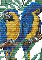 Набор для вышивания крестом 19х28 Два попугая Joy Sunday D498