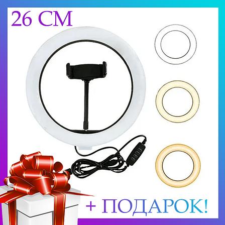 Селфи световое кольцо Selfie Ring Fill Light Кольцевая лампа ZD666 10 Вт D=26 см 5500K - 3200К, фото 2