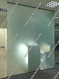 Стеклянные перегородки офисные  (прозрачные, матовые)), фото 3