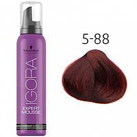 Тонирующий мусс для волос Schwarzkopf Professional Igora Expert Mousse, 100 мл 5-88 Средний коричневый красный экстра