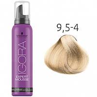 Тонирующий мусс для волос Schwarzkopf Professional Igora Expert Mousse, 100 мл 9.5-4 Светлый блондин пастельный бежевый
