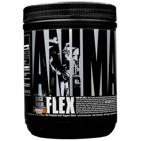 Animal Flex Powder Universal Nutrition (381 гр.), фото 2