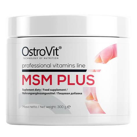 MSM Plus Ostrovit (300 гр.), фото 2