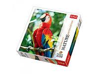 "Пазлы Nature ""Красный ара. Гондурас"" Trefl 10516, 1000 деталей"