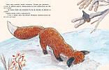 Книга Затишье в лесу, фото 2