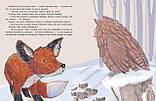 Книга Затишье в лесу, фото 4