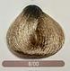 Крем-краска для волос 8/01 натуральный пепельный светло-русый Erayba Equilibrium Hair Color Cream, 120 мл, фото 2
