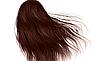 Крем-краска для волос  Kleral   KS 7.35 Magicolor   100 мл, фото 2