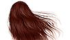 Крем-краска для волос  Kleral   KS BRONZO Magicolor   100 мл, фото 2