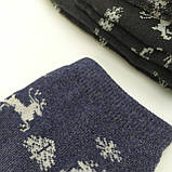 Носки мужские махровые средней высоты ,,Олени,, размер 41-45, фото 2