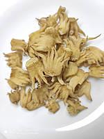 Зозулинець плямистий (Ятрышник пятнистый) 100 грам