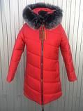 Куртка женская зимняя модель Полоска, размеры от 40 до 50, фото 6