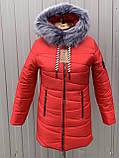 Жіноча зимова куртка модель Мілана, розміри від 40 до 56, фото 4