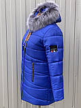 Жіноча зимова куртка модель Мілана, розміри від 40 до 56, фото 9