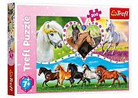 Настольная игра Trefl Пазл Красивые кони, 200 эл. (13248)