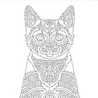 Розмальовка Fairy Tale Кіт (FTRS3)