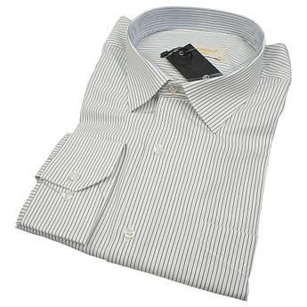 Класична чоловіча сорочка в смужку Negredo 0330 BDC 05