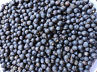 Ялівець ( Можжевельник ) 500 грам