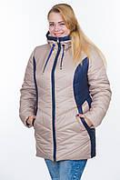 Куртка зимняя № 26 бежевый-синий р. 50-56