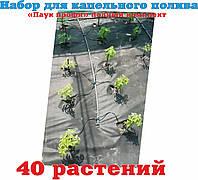 """Набор для капельного полива """"Паук Профи"""" """"Полный комплект"""" 40 растений igost"""
