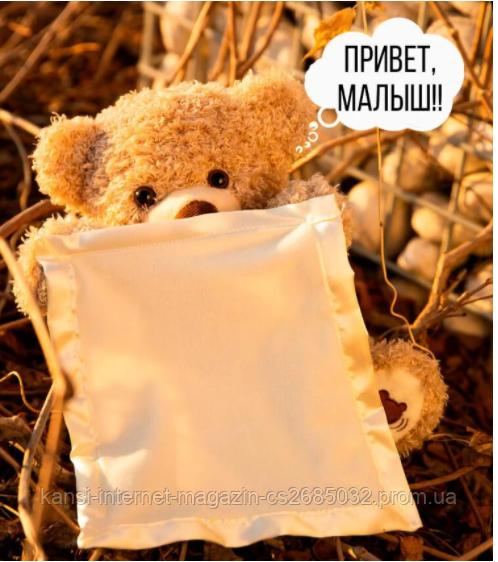 Мишко говорить Інтерактивна іграшка Peekaboo Bear (Пикабу)