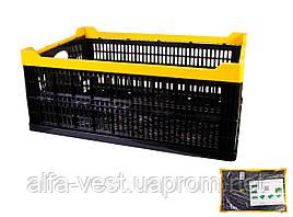Ящик складной пластиковый  600*400*240 мм черный MASTERTOOL 79-3950