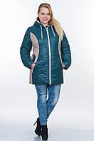 Куртка зимняя № 26 зеленый-бежевый р. 50-56