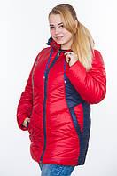 Куртка зимняя № 26 красный-синий р. 48