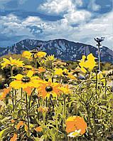 """Картина за номерами """"Весна в горах"""" 40*50см"""