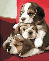 """Картина по номерам """"Милые щенки"""" 40*50см"""