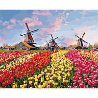 """Картина по номерам Сельский пейзаж """"Красочные тюльпаны Голландии"""" 40*50см KHO2224"""