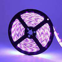 Dilux - Світлодіодна стрічка UV SMD 5050 60LED/m, IP65, ультрафіолетова
