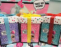 Кукла LOL с аксессуарами в подарочной упаковке  / аналог
