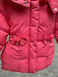 Зимняя куртка для девочки БИО-ПУХ Коралл р. 92, 98, 104, 110, фото 6