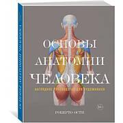 Основы анатомии человека. Наглядное руководство для художников Роберто Ости