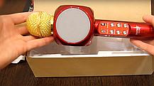 Беспроводной караоке микрофон со встроенной колонкой Wster WS-1816, фото 3