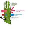 Подушка DOTINEM ЭкоТекс Линия Бамбука 70х70 Из бамбукового волокна Гипоаллергенная Натуральная Универсальная, фото 3