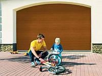 Alutech TREND Ворота гаражные секционные с пружинами растяжения