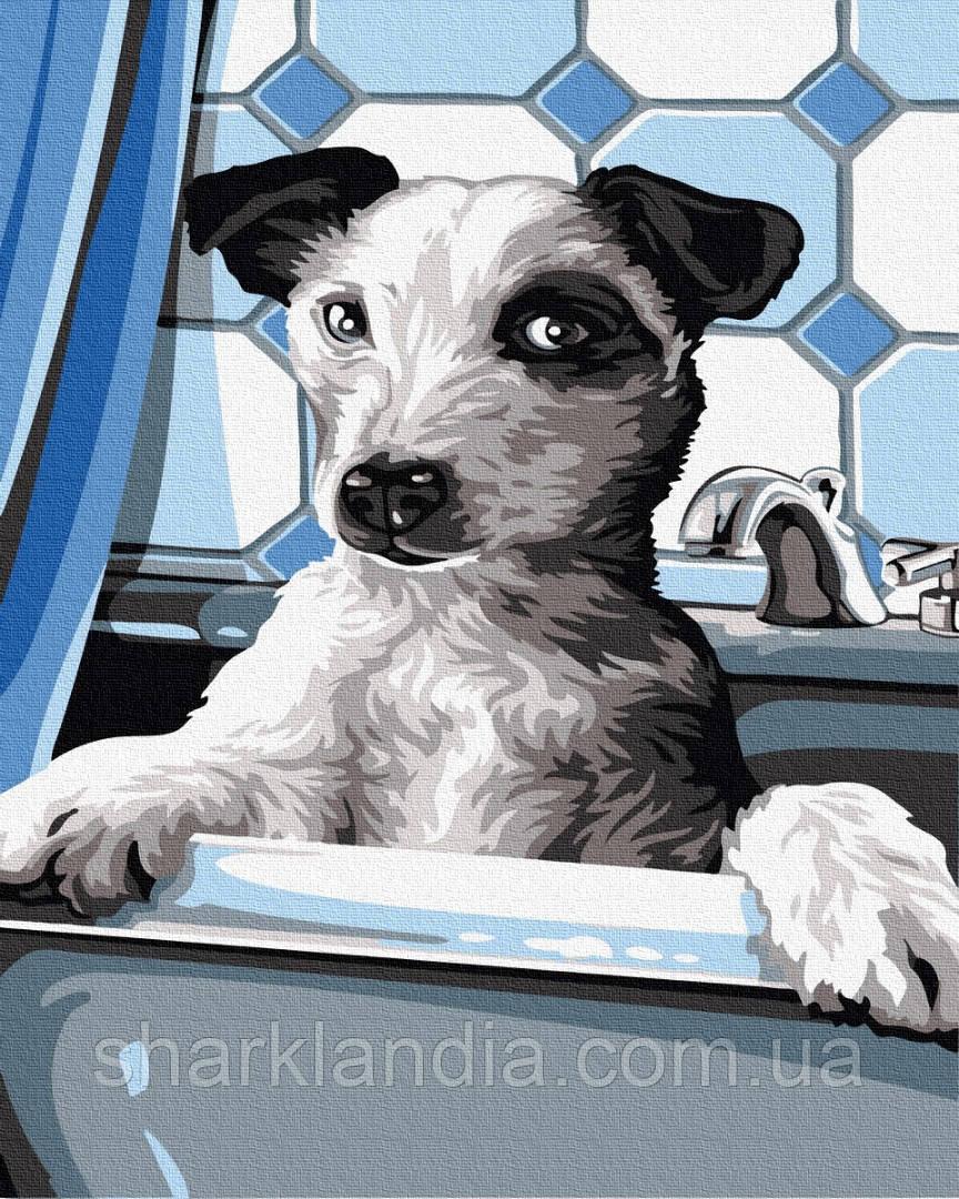 Картина по номерам Собачка на купании 40*50см Brushme  Пес Собаки