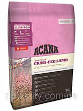 ACANA GRASS-FED LAMB– для собак всех пород на всех стадиях жизни 6кг