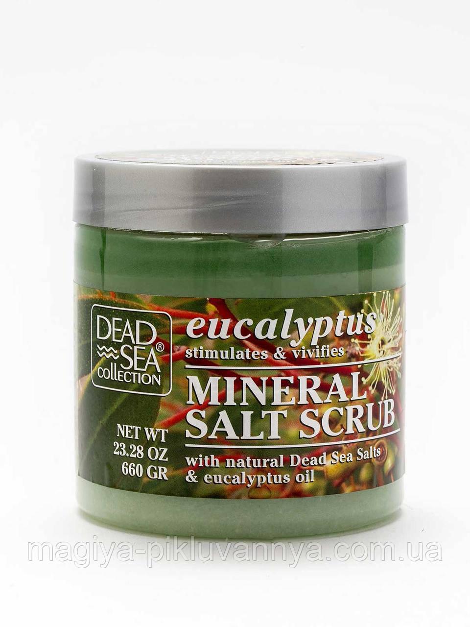 DSC Скраб для тела с минералами Мертвого моря и маслом эвкалипта 660г, арт.003460