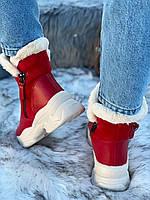 Ботинки женские зимние 6 пар в ящике красного цвета 36-40, фото 4