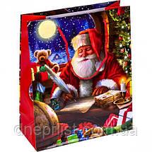 """Пакет """"Новогодний"""" средний,  21,5х18х8 см / Дед Мороз, фото 2"""