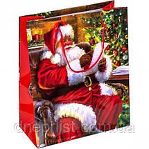 """Пакет """"Новогодний"""" средний,  21,5х18х8 см / Дед Мороз, фото 3"""